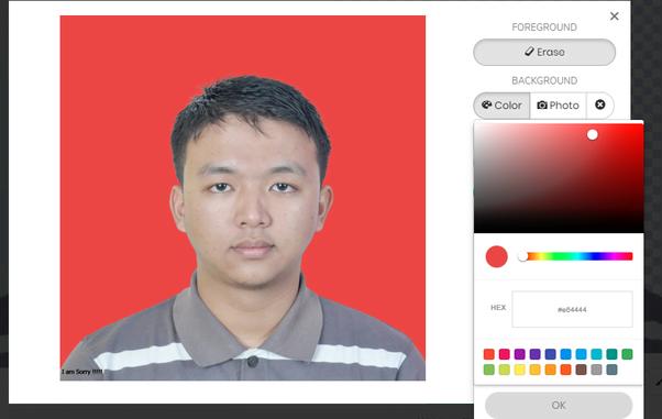 Cara Menghapus Background Pada Foto dengan Rapi Tanpa Photoshop 4