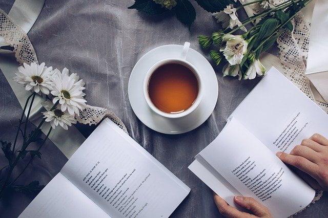 Pengertian Puisi: Sejarah, Jenis, Tokoh & Cara Membuat Puisi 1