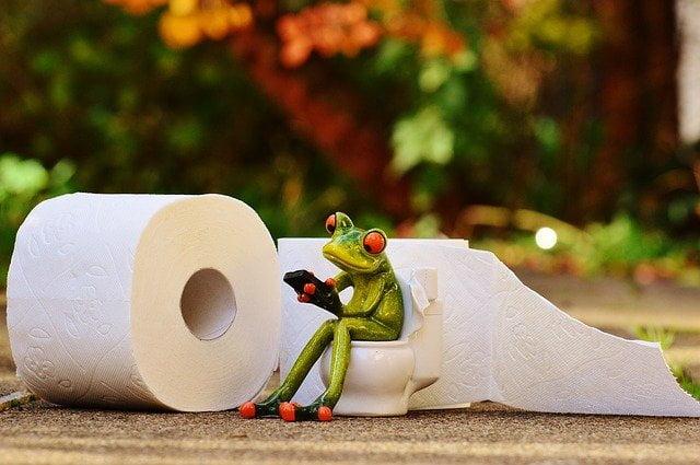 Cara Membersihkan Toilet yang Tepat